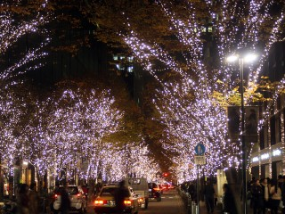 The Holiday Season in Japan is one of Lovely Light! Illumination all over and for All images
