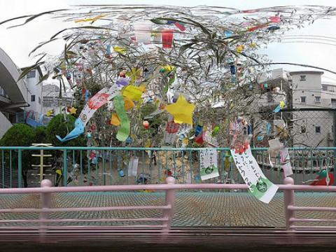 Asagaya Tanabata Matsuri images