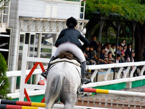 JRA Japan Horse Show on Golden Week images
