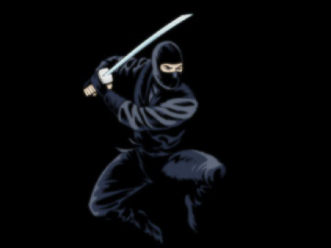 Japan has an annual Ninja Festa (Kids welcome!) images