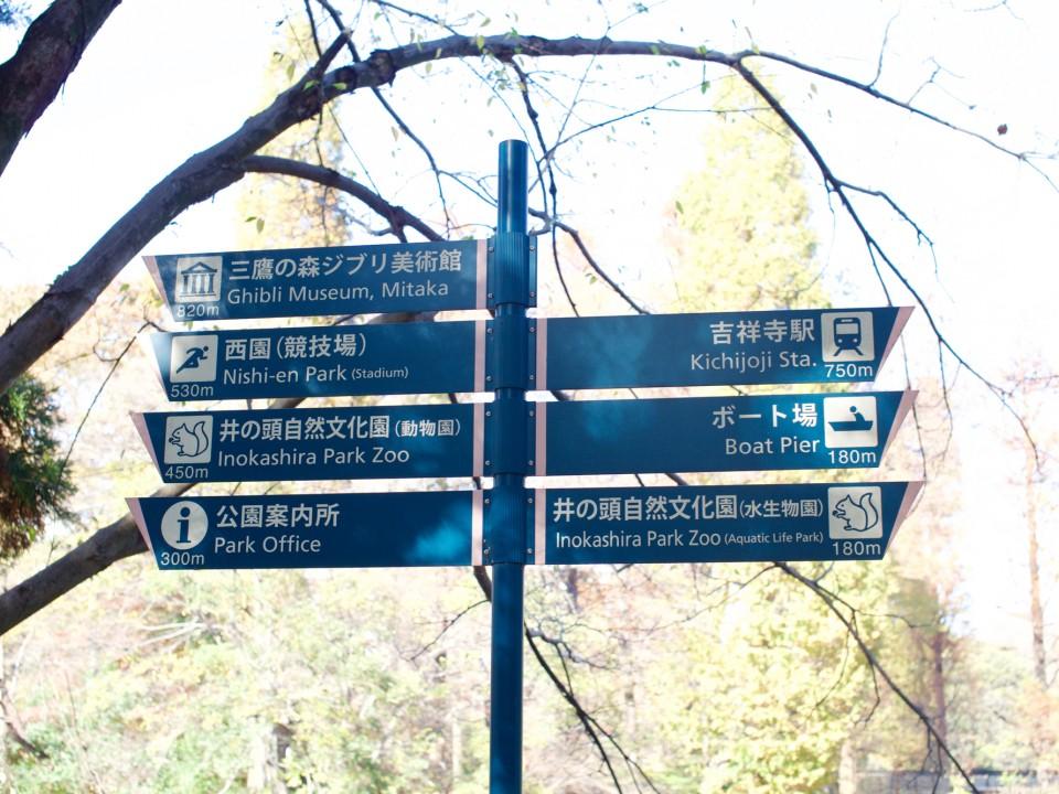Lots to do at Inokashira Koen (Park)