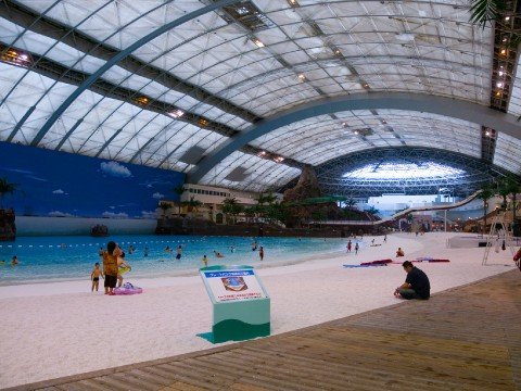 Let's Go Swimming in Yokohama! images