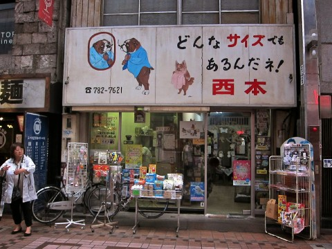What to do on rainy days in Tokyo: Palm Shoutengai (covered shopping street) images