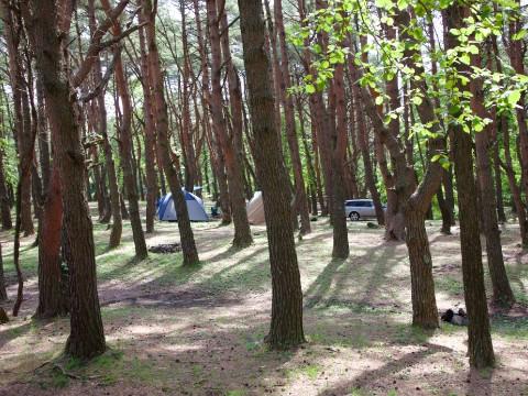Camping at Lake Motosuko near Mt. Fuji images