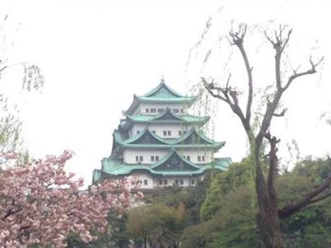 Where can I take a nice jog in Nagoya? images