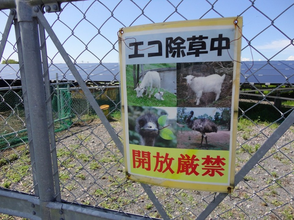 A sign informing about weeding by livestock on the gate of the fence (source: Nikkei BP)