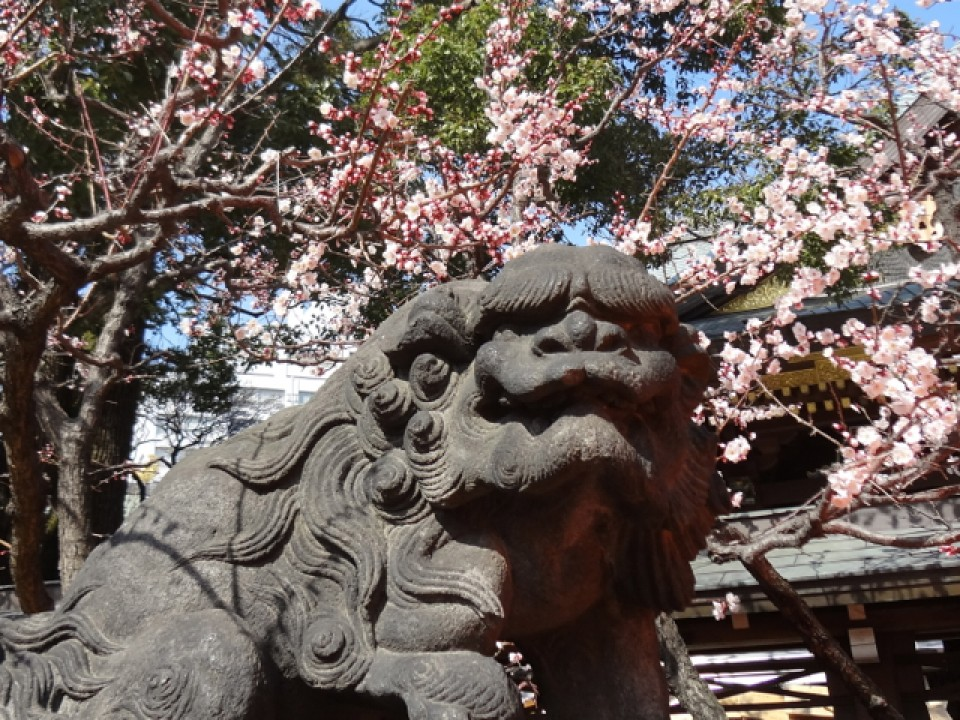 a lion at Yushima Tenman-gu