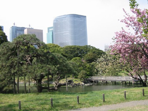 Hama Rikyu Gardens - a beautiful park in Central Tokyo images