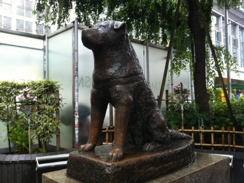 Hachiko - the famous meeting place in Shibuya images