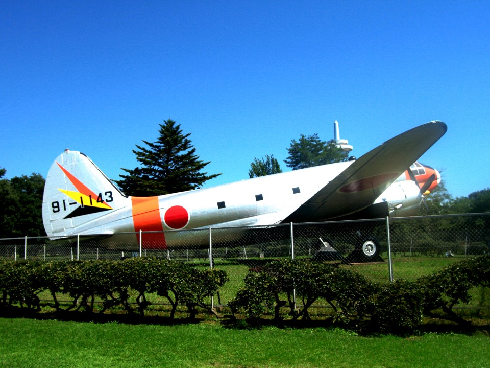 Cute airplane. Protagonist of the park.