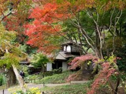 Must-Visit Yokohama Parks images