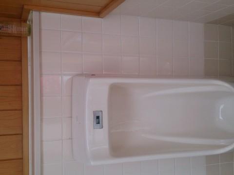 Toilet Ikebana images