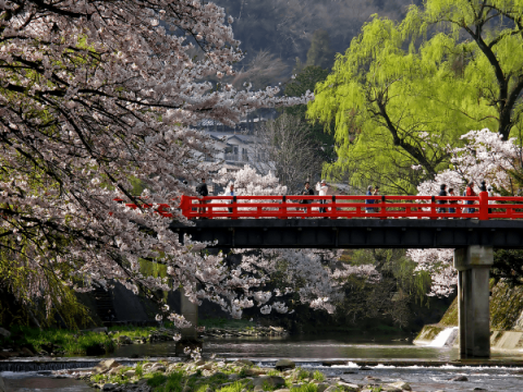 Japan Travel Tips images