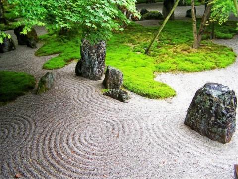 Experience Zen images