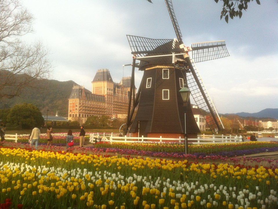 Windmill, tulips and the Royal Palace