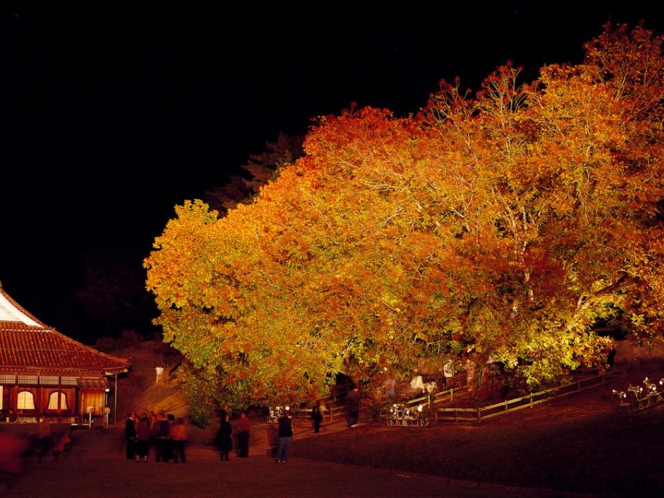 The historic Shizutani School at night.