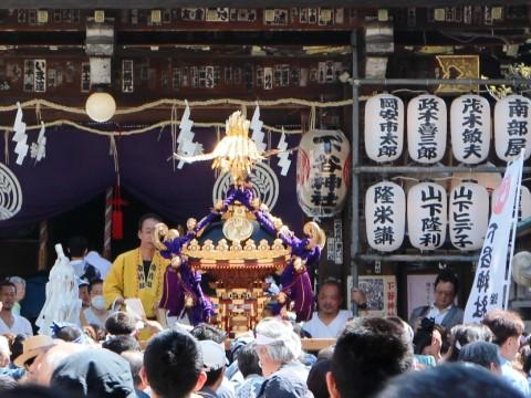 How to enjoy Matsuri in Shitamachi images