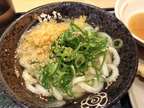 Udon is a Must-Try for a Real Japanese Noodle Experience images