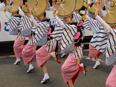 Awa Dance Festival in Tokushima Pref. images