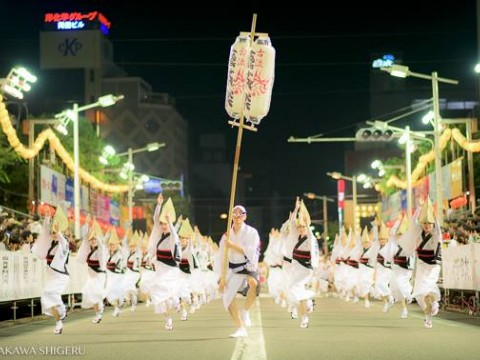 Awa Odori (阿波おどり) – Summer Festival in Tokushima Prefecture images