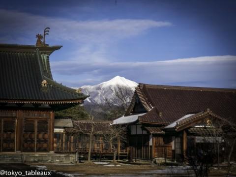 Samurai Spirit images