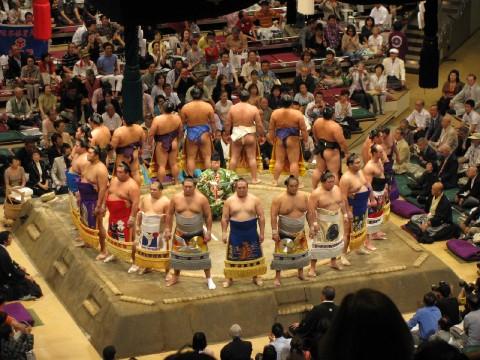 Sumo!! images