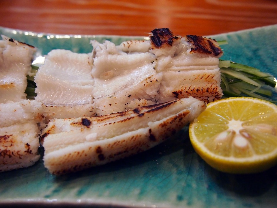 Charcoal-grilled Conger Eel