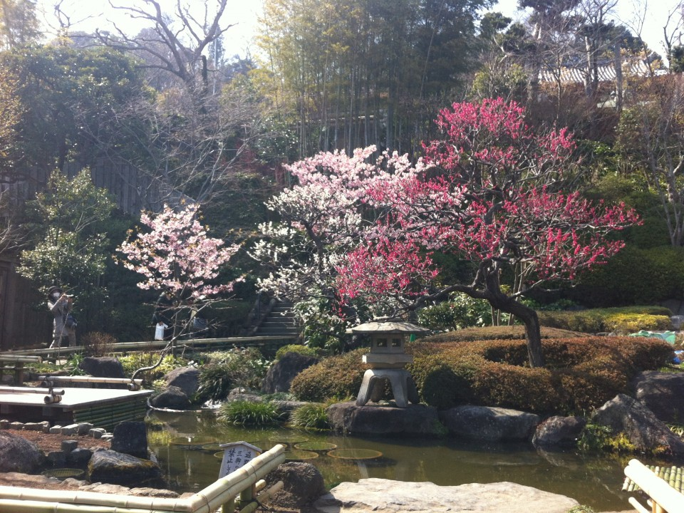 Garden of Hase temple