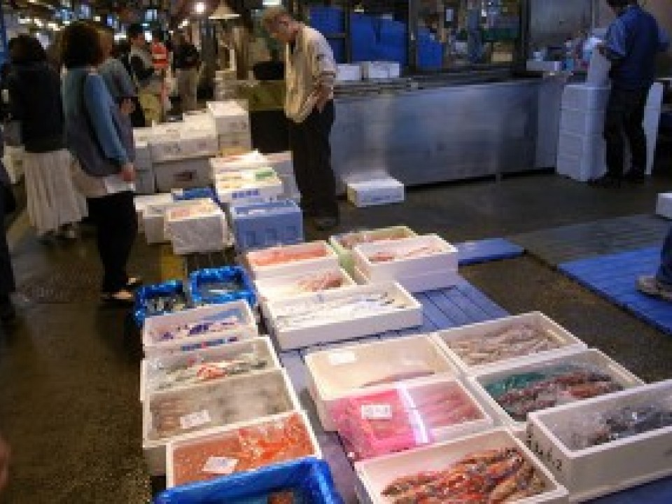 Various kinds of fish and shellfish in season lie side by side, on sale at bargain prices