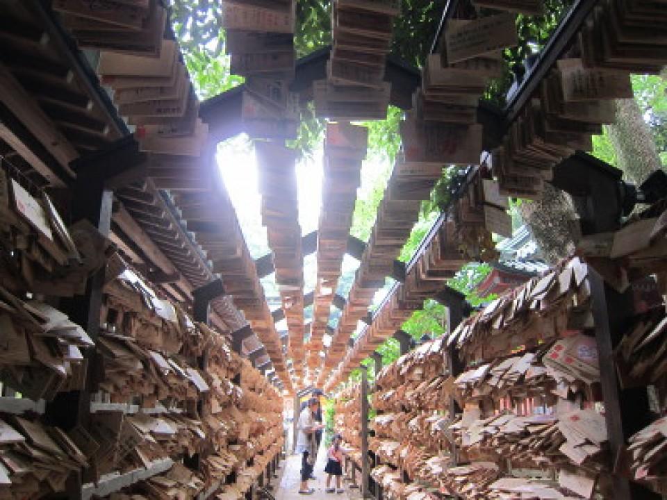 Wooden wish tabet