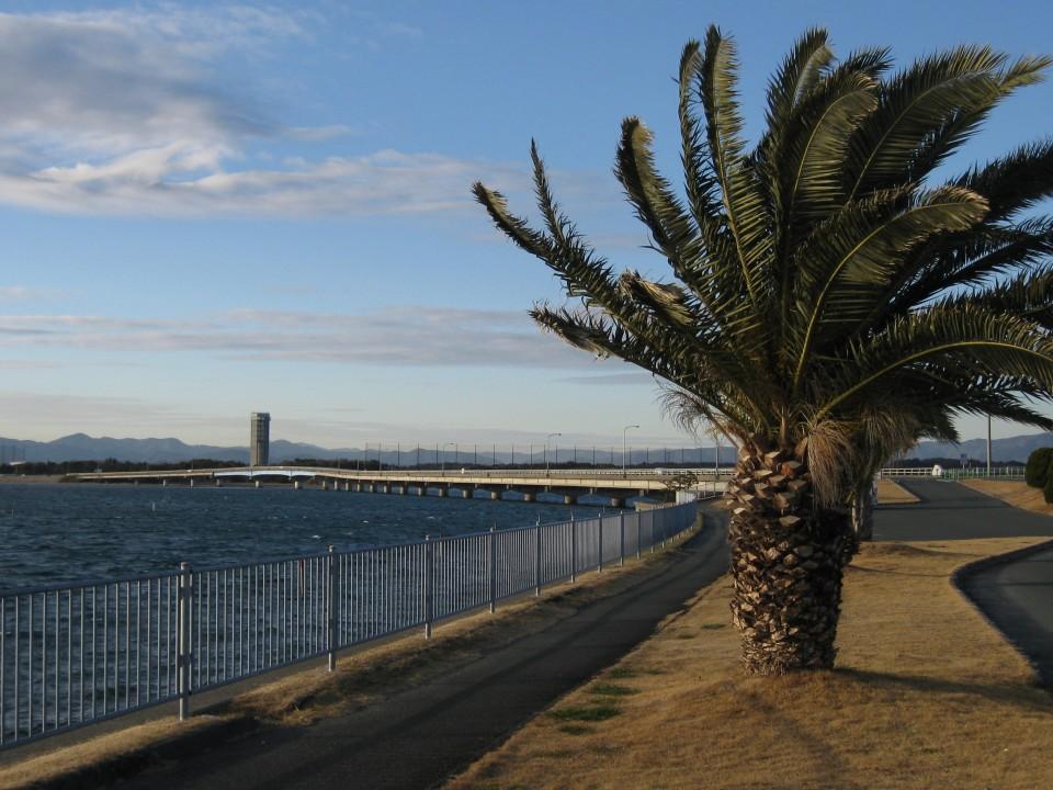 Lake Hamana, the road side