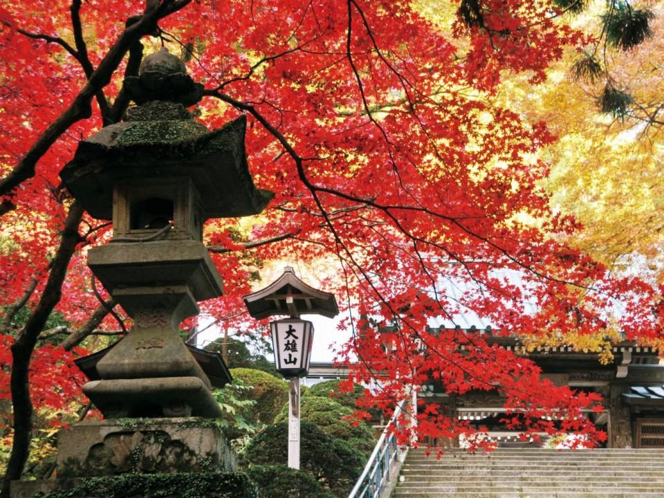 Daiyuzan Saijoji in Autumn