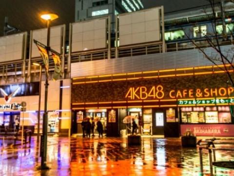 Akihabara & Ueno Restaurants: Themed images