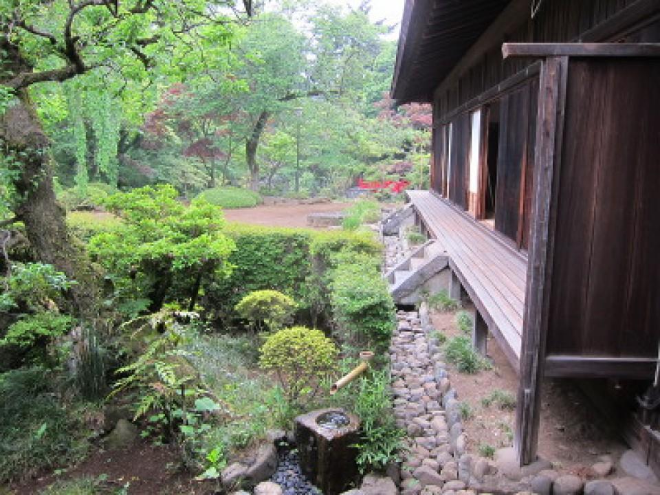 Enshu style Japanese garden