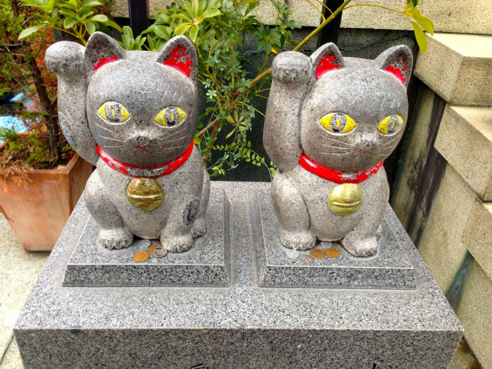 lucky manekineko cats