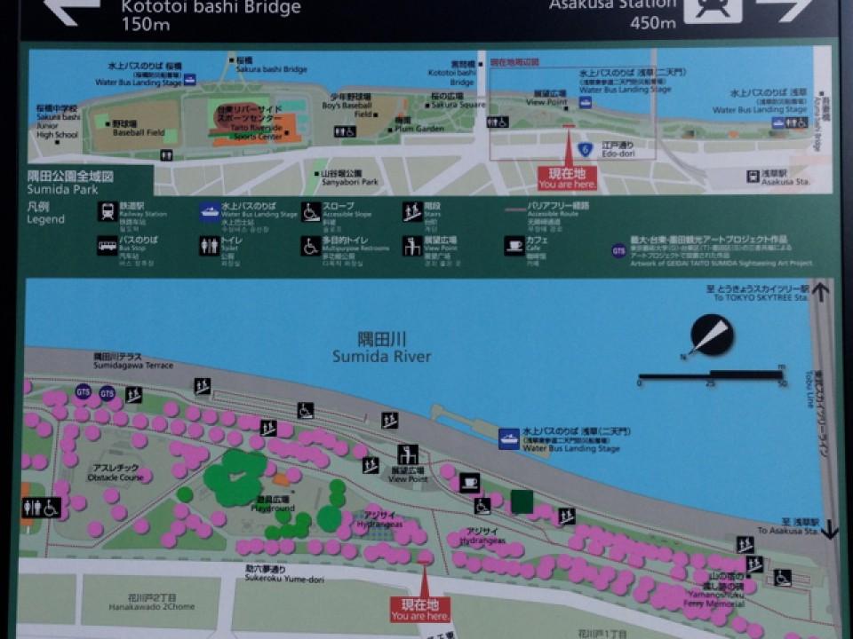 Sumida Park in Asakusa