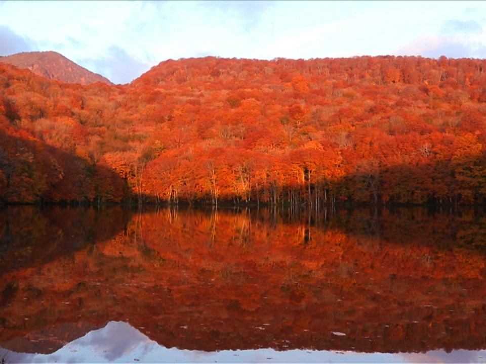 Autumn Foliage at Tsuta Numa Lake