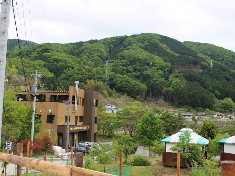 Another view of Baird Brewery Gardens Shuzenji