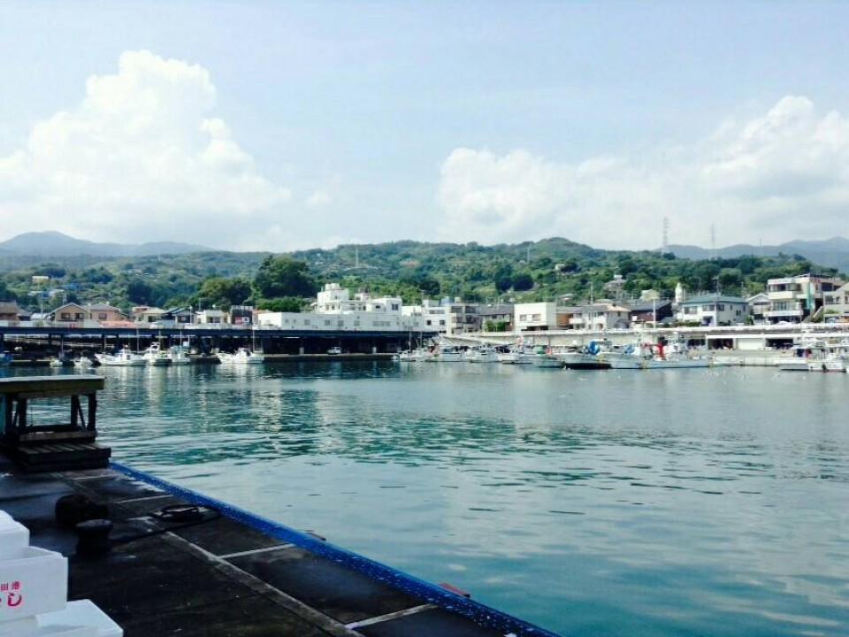 Hayakawa Port