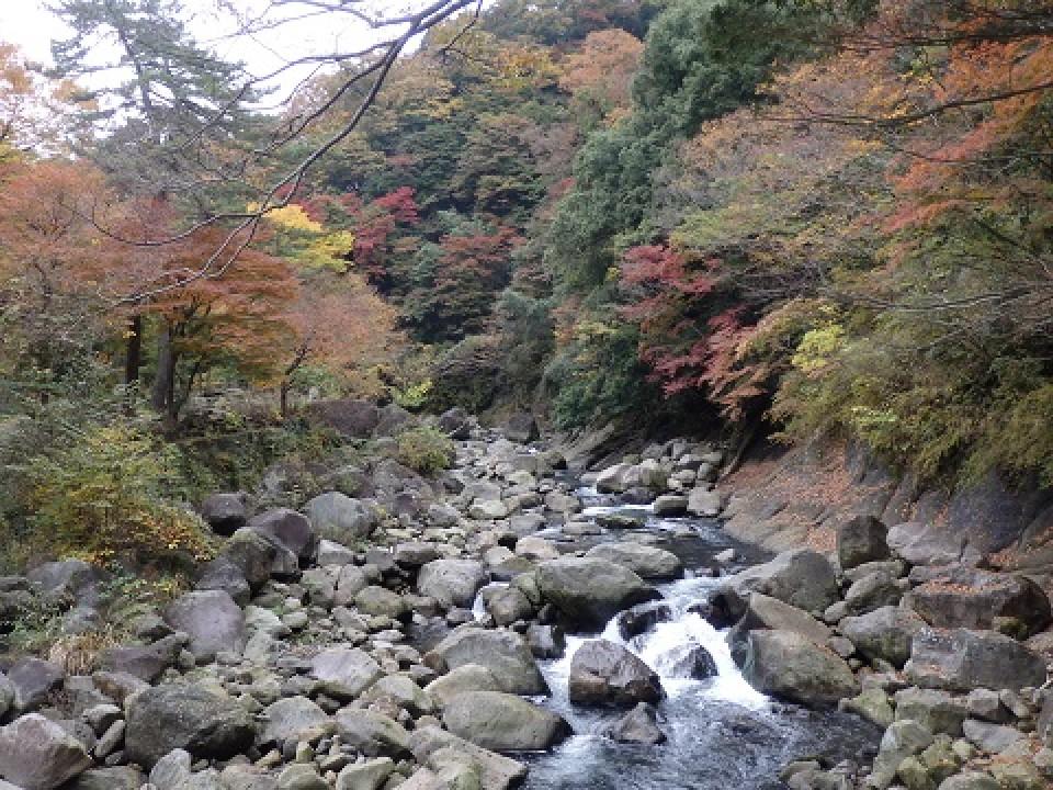 Flowing Hayakawa River
