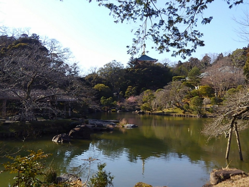 Temple's Japanese garden