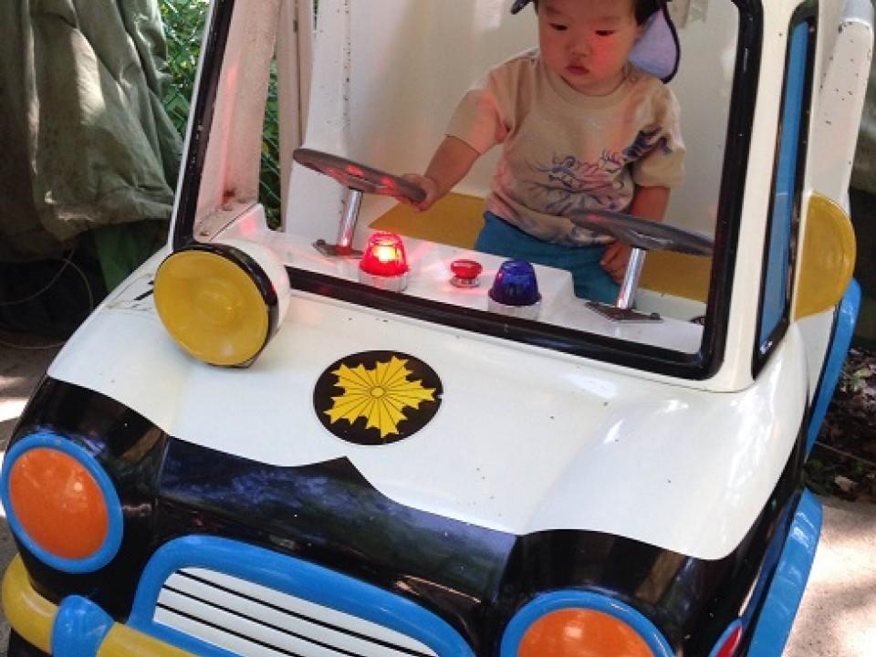 Amusement park for little kids