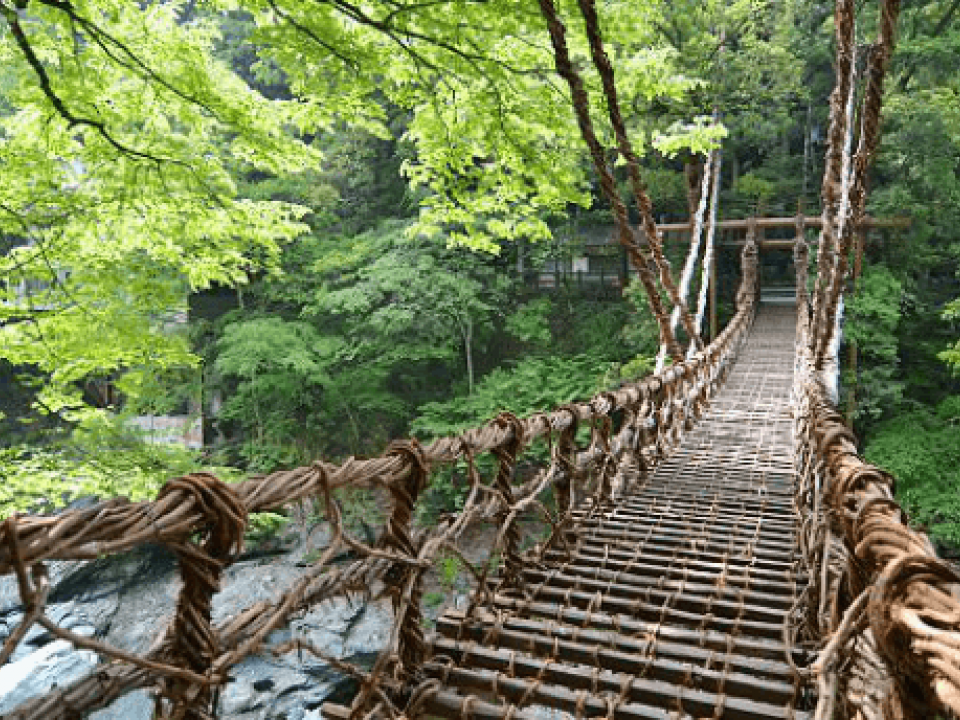 Vine Bridge-photo courtesy of Japan Guide