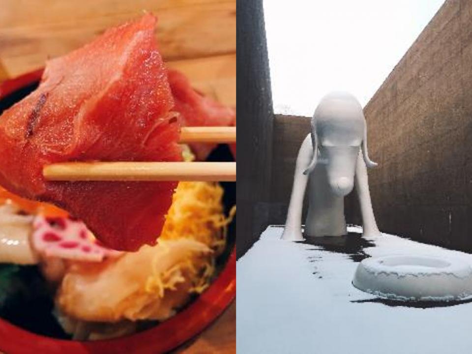 Tuna rice bowl and Aomori ken