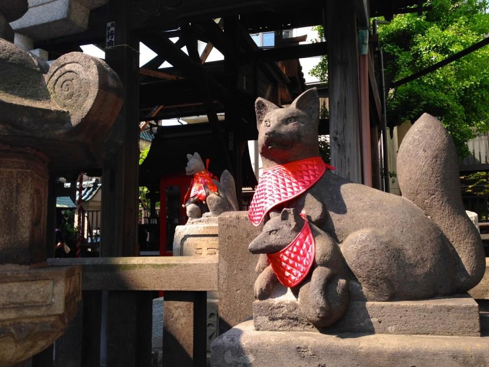Foxes in Asakusa