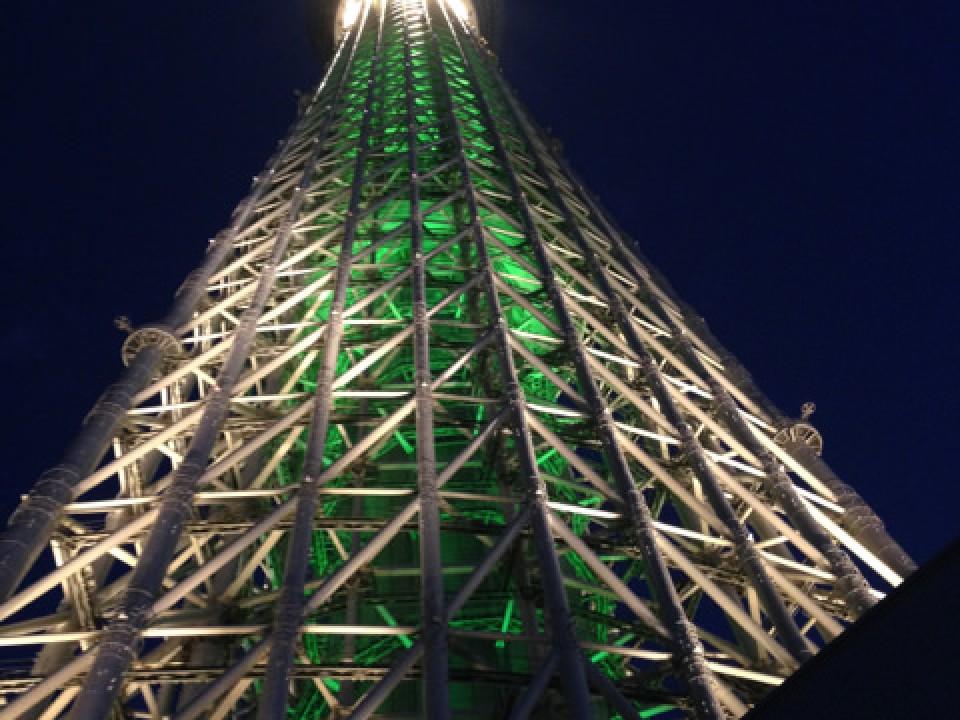 green Christmas special illumination of Skytree