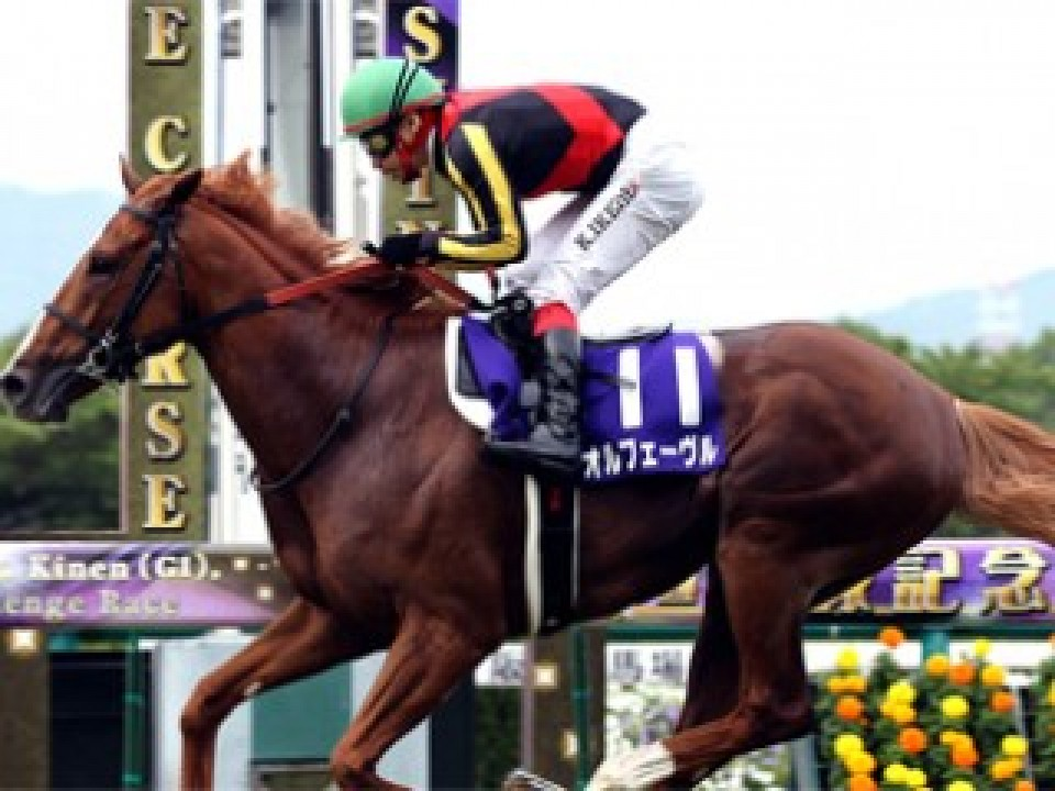 "great horse, ""Orfevre"""
