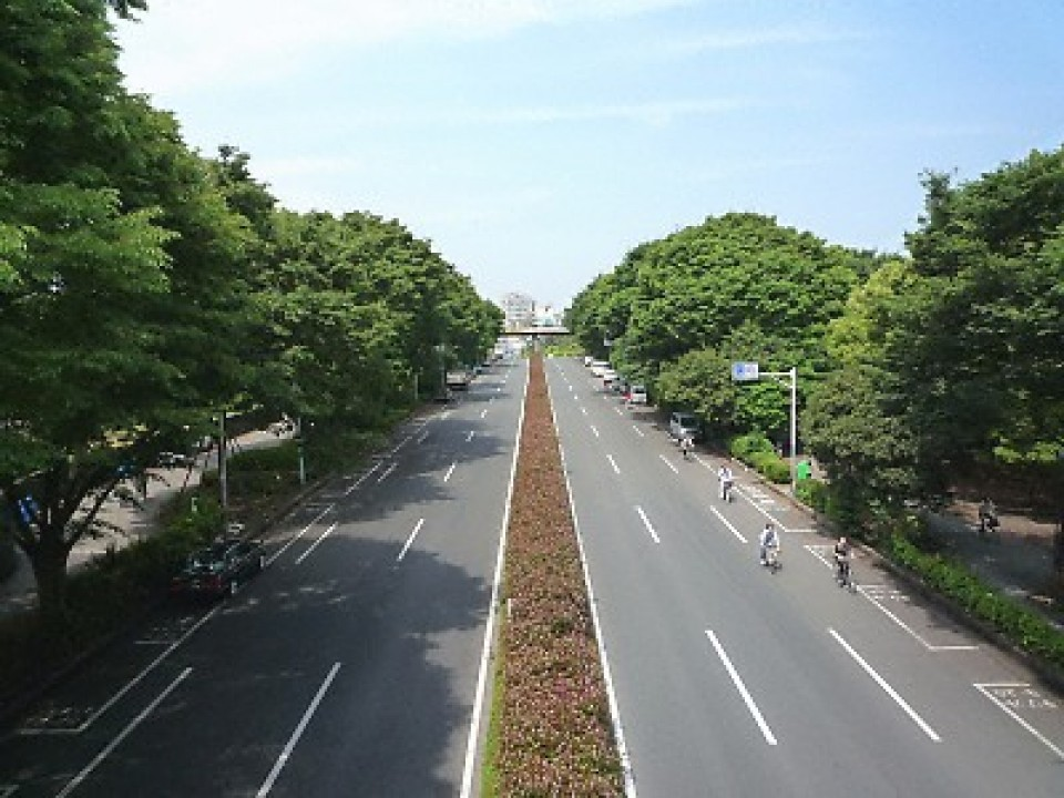 A strip of Inokashira Ave. near Yoyogi park.
