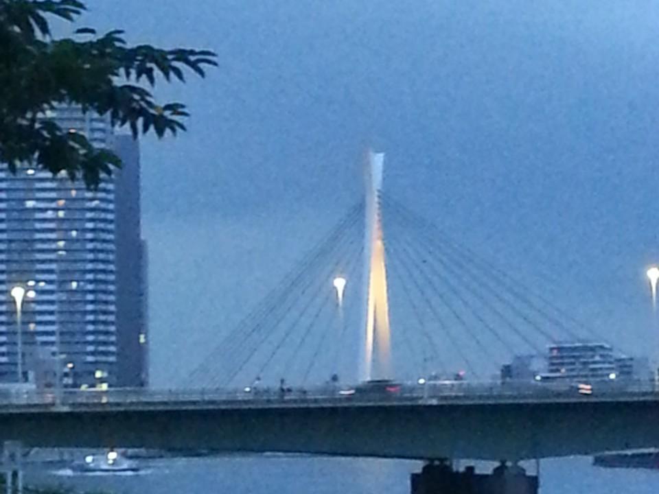 Chuo Ohashi Bridge Overlaying Tsukuda Ohashi Bridge