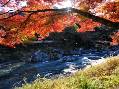 Mitake Valley in Ome City, Okutama images